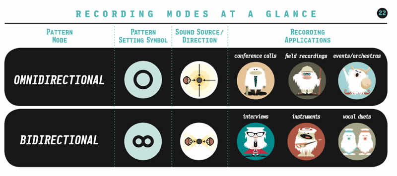Types of mic settings in the manual